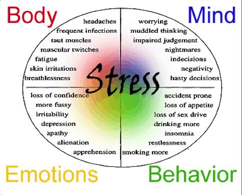 http://study.com/academy/lesson/long-term-stress-symptoms-effects-lesson.html